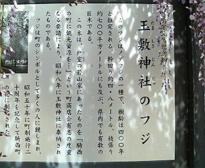 P1000013_4
